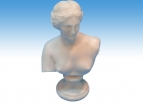 Bust of Aphrodite