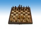 Magnetic Chess & Backgammon